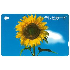 テレビカード